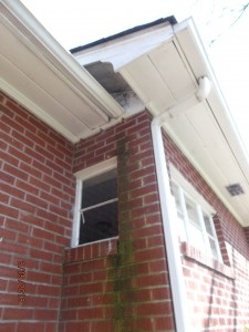 water damage on brick home