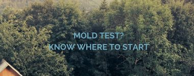 Mold Test? Know Where to Start